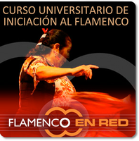 FLAMENCO EN RED