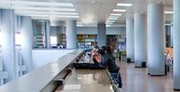 Alumnado de nuevo ingreso: oferta de asignaturas con docencia en inglés y curso cero