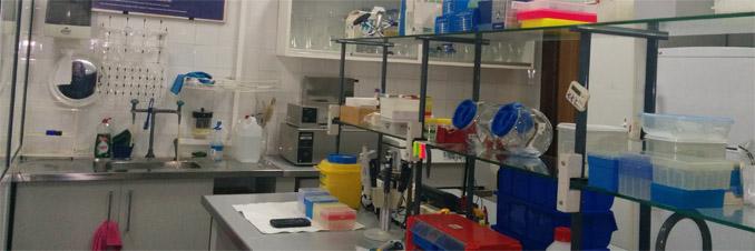 Fisiología Humana, Histología Humana, Anatomía Patológica Y ...