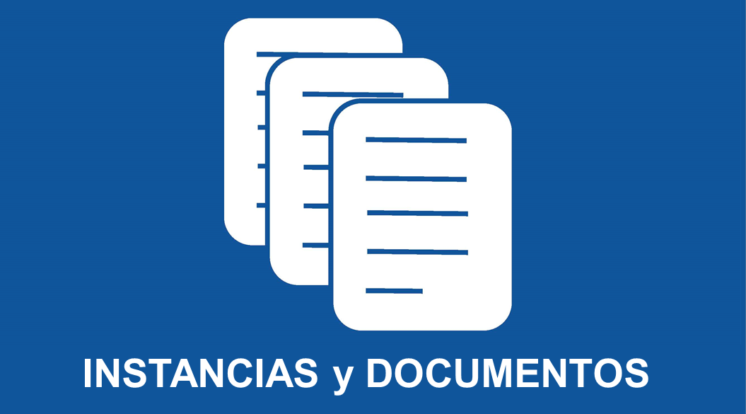 instancias y documentos1